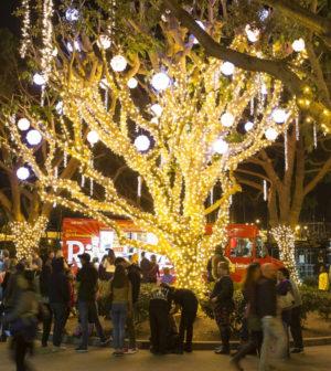 Marina Christmas Lights In Del Rey Let S Talk Los